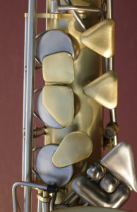 Photo of sax palm keys